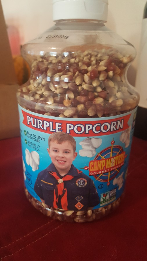 I bought a $12 container of popcorn because I was afraid of a BoyScout